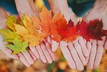Wedding :: Fall / Fall in love with these wedding ideas!