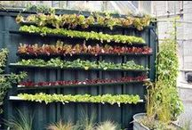 Vertical Garden Projects / Don't limit your garden to the ground. Here is some space saving, vertical gardening inspiration that will take your gardening to another level.