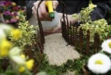 Miniature Garden Madness / Customers can't get enough of this gardening on a small scale trend. We offer miniature gardening classes and receive new product monthly.