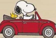Snoopy & Friends / by Red Bank Veterinary Hospital