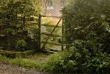 Home: Garden / How a garden should be!