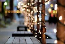 Home for the Holidays / by Lindsay Wangen