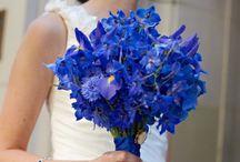 Blue Weddings / by Rachel Stankevich