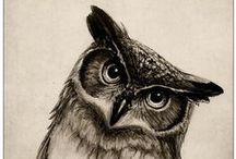 Owls / I love them. I am one.  / by Carly Stocking