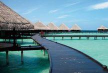 Viajes :: Travels