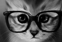 ::CAT MUSINGS:: / Furry Feline Friends