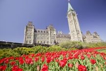 Spring Colours / Each Spring Ontario bursts to life with colour. Celebrate with a trip to flower festivals across the province!