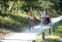 Cycling / by Visit Poitou-Charentes