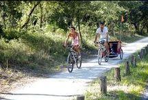 Cycling / by Atlantic Coast & Cognac Country