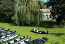 Marais Poitevin / Our Green Venice ! / by Atlantic Coast & Cognac Country