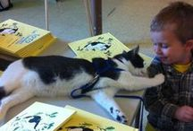 Furry friends that love reading and libraries! / Animals across the Commonwealth are helping youngsters fall in love with reading and build confidence in their reading skills.