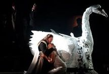Lieber Swan