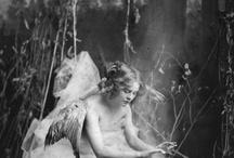 Fairies / by C. P.