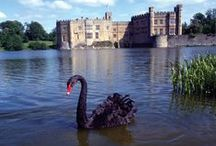 Leeds Castle / Torindan, High Hold in DawnSinger, book one of Tales of Faeraven, is based largely on Leeds Castle. A noted castle historian proclaimed Leeds Castle to be the fairest in the world.