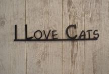 Cats =^.^= / by Jael Sarah