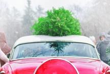 ::Sleigh Bells Ring:: / Christmas! Christmas! Christmas!  / by Colleen Lucas