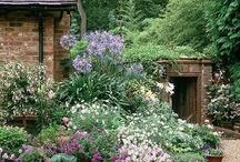 Garden And Landscape Designs  / by Jan Jeffreys