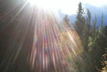 Homespun Inspiration / Follow for Insights and poems that speak of life and its lessons learned.