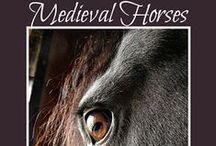 Medieval Fantasy Research / Research by a medieval epic fantasy novelist and storyteller