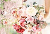 Bouquet Inspiration / Bridal Bouquet Inspiration