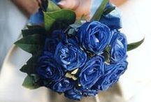 Wedding  / by Valentina Hintz