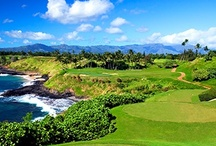 Hawaii Golf & Lifestyle  / by Golfhub Teetimes