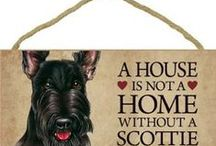 SCOTTISH TERRIER / by Marta De Franco