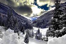 Winter / by Jamie Barringer