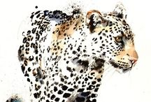 Wild Animals! Love This!