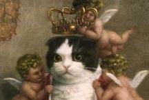 Cats: a girl's best friend