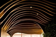 Ceilings / by Lin Santos