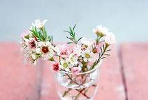 ☆ FLOWERS ☆