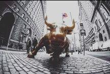 Aktien, Börse, Geld