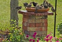 GARDEN CONTAINERS / Garden Containers / by Bree Ramsey