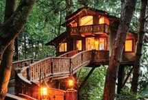 Tree houses are an obsession of mine