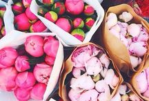 Stop and smell the peonies + little things