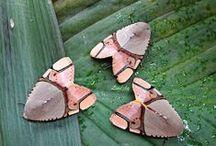 Amazing Bugs / by Kathy Chilcott
