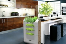 Sustainable Living / by Mandy Weger