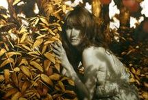 Art . . Brad Kunkle / All of this distinctive artwork is painted in oils with gold and silver leaf that appears to change depending on the light. / by Francine Schwartz