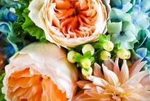 Fleurs / by Mady Grow