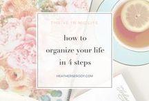 organization & productivity