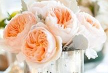 Beautiful flowers! / by Design Exclusive, LLC