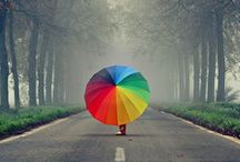 Colors // Rainbows / All things #Rainbow!