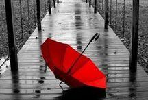 Umbrellas {Keep The Rain Off}