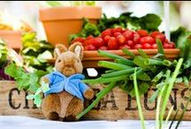 Baby's 1st Birthday | Peter Rabbit Garden Party / Join Peter Rabbit & Mr. McGregor for Baby's First Birthday and Garden Party!