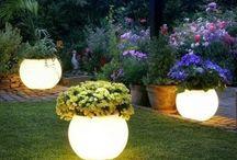 Green Thumb / Garden & Indoor Plants / by Kathryn Stockwood