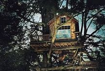Tiny Homes, Tree Houses, Cabins, Huts & Sheds.  / by lil'Quirky