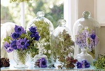 Under glass / Any object displayed under glass is beautiful and adds a wonderful touch to decorating