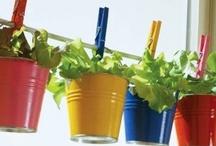 Homemade Green Salad