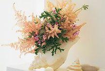 Seashells Summer Decoration with flowers